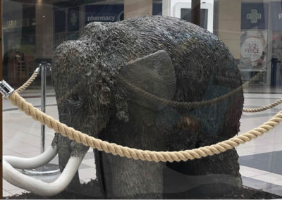 Display case for a woolly mammoth in Ipswich's Buttermarket, to be auctioned on behalf of St Elizabeth Hospice